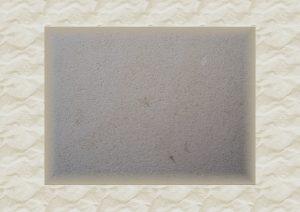 Calcaire tendre de Tervoux